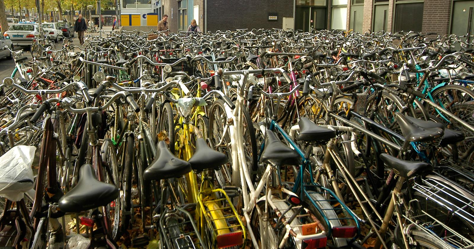 frissewind-foto-reportage26-fiets