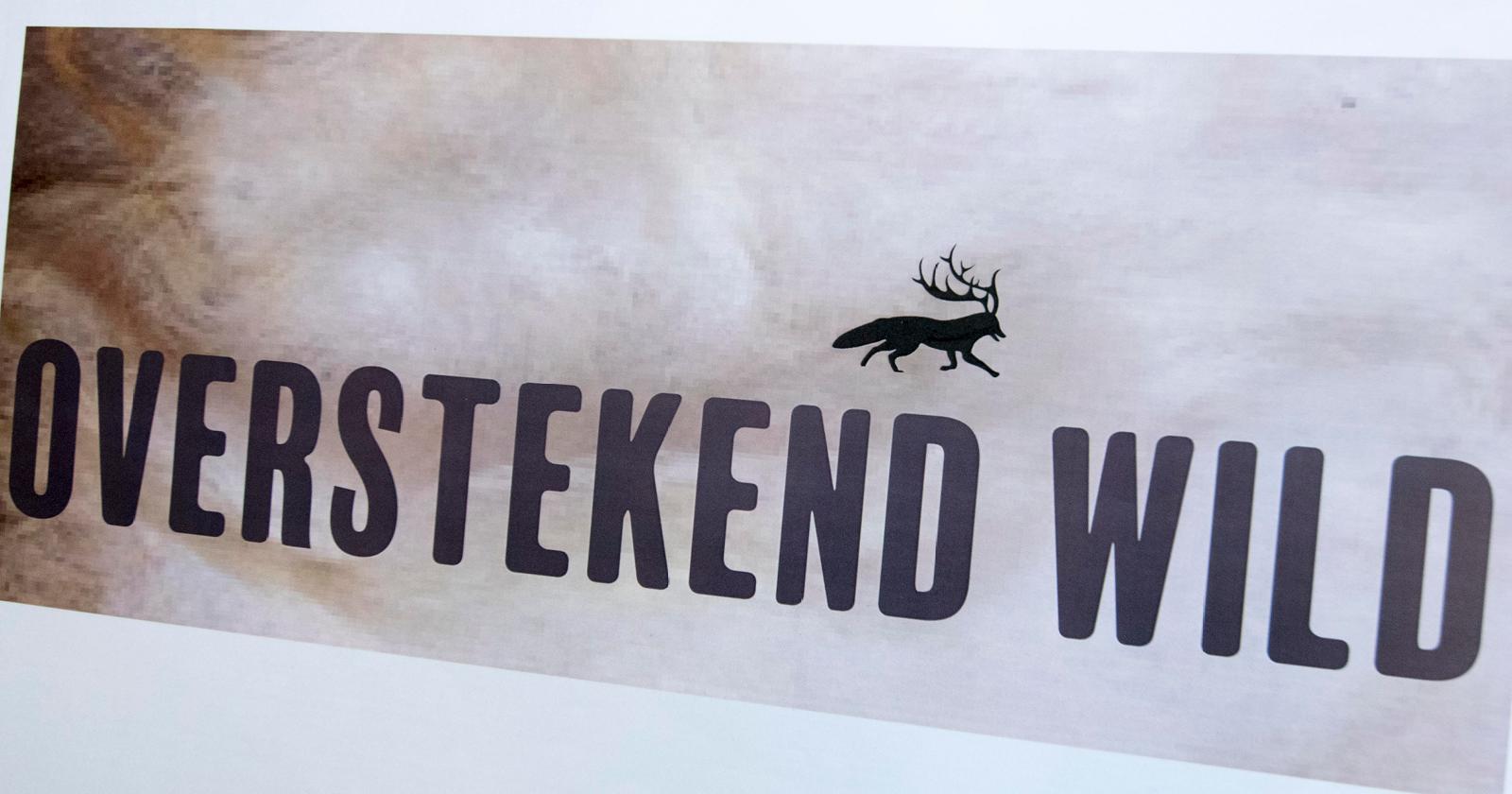 -werk-grafisch ontwerp19 Overstekend Wild